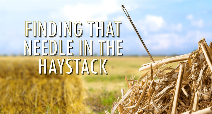 Finding that Needle in the Haystack: Best Practices for Selecting Learning Technologies