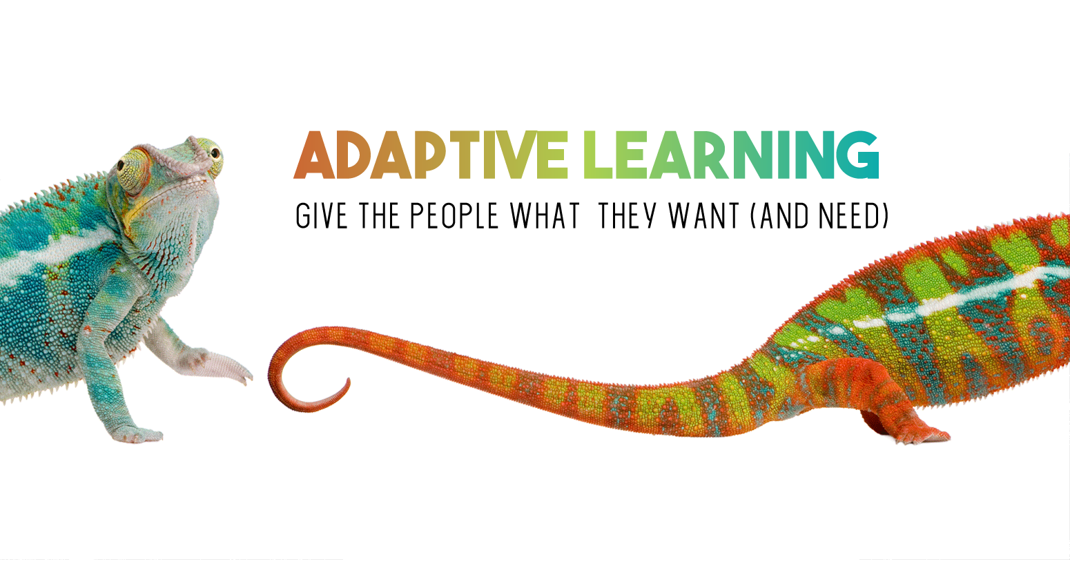 Laura Oswald Adaptive Learning Strategy